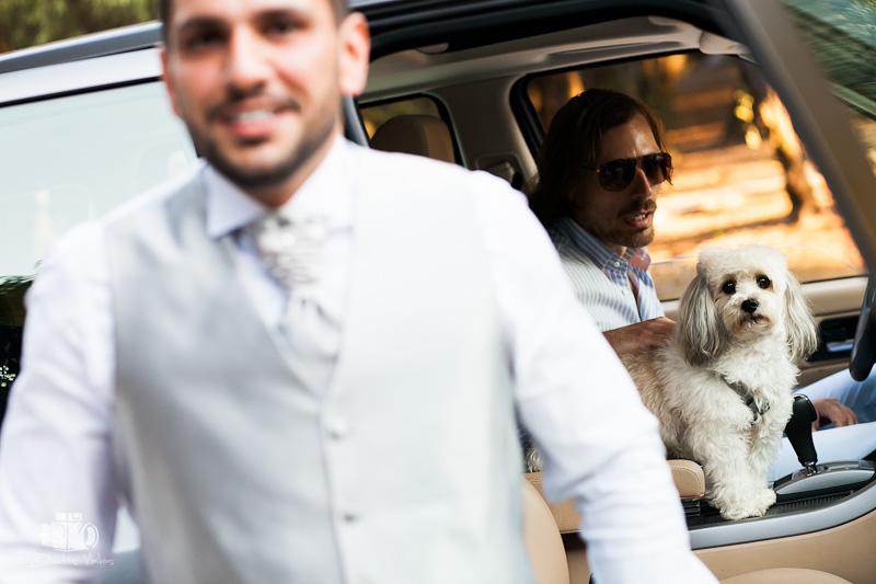 Fotografisi gamou ston Agio dimitri Loubardiari Athina. Wedding photography at Loubardiaris Athens